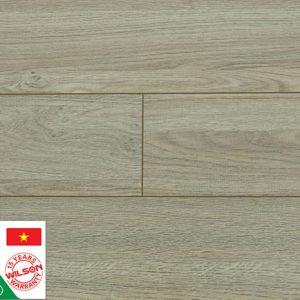 Sàn gỗ công nghiệp Wilson W445