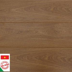 Sàn gỗ công nghiệp Wilson W553