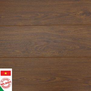 Sàn gỗ công nghiệp Wilson W554