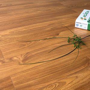 Sàn gỗ công nghiệp Acacia DS501
